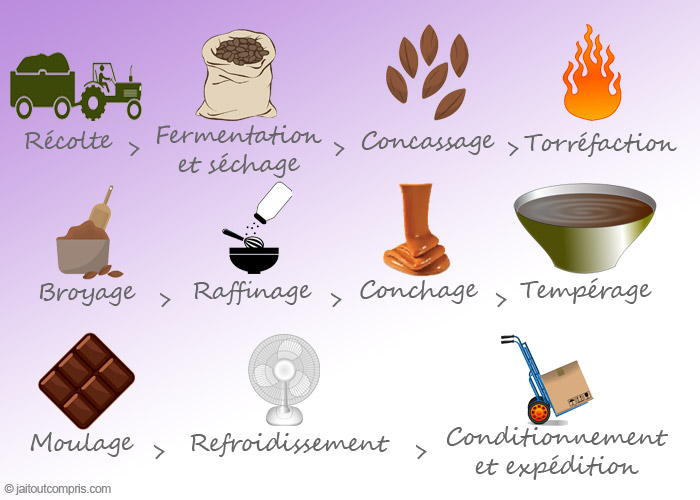 Comment fabrique t on le chocolat question r ponse - Comment griller des noisettes ...